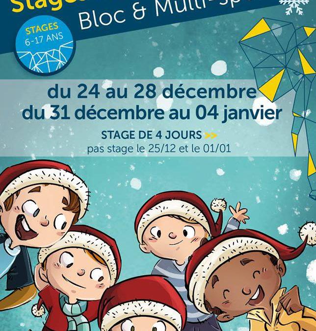 Stages Noël et Nouvel An